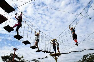 Ecopark senderos a misses 24 1 scaled
